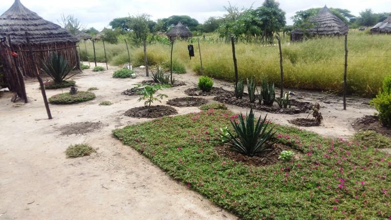 neue Hausgärten