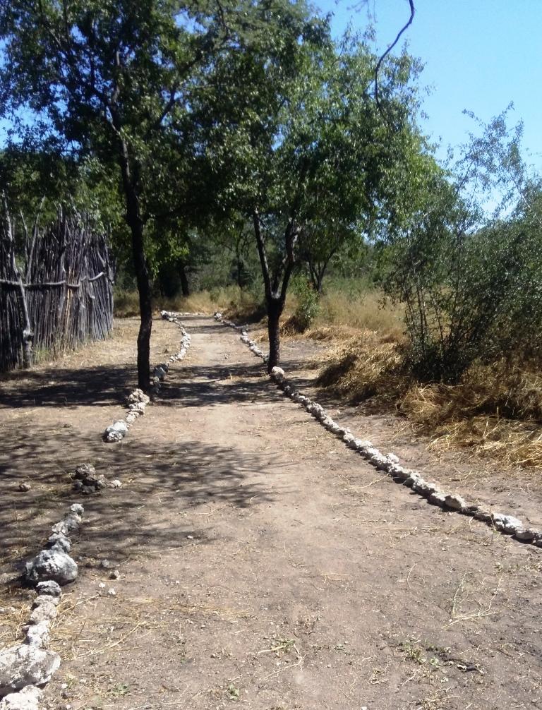 Bushman Trail 3