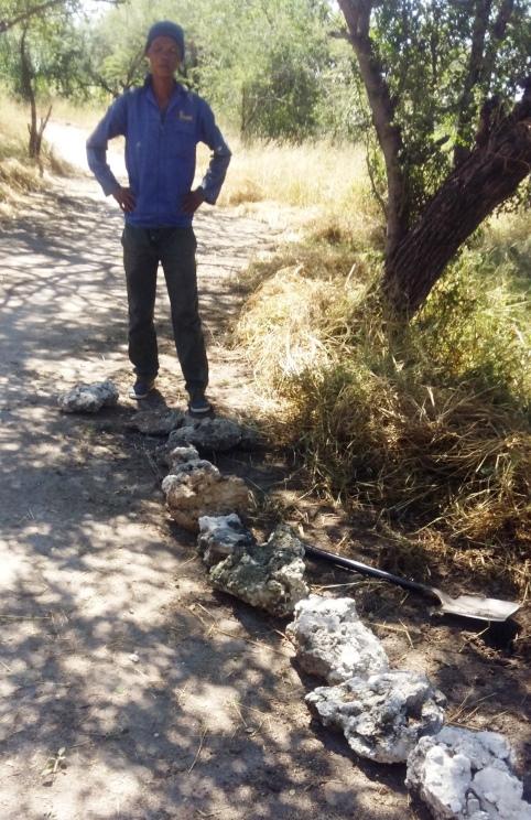 Bushman Trail 4